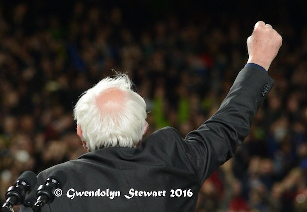 Forward! Senator Bernie Sanders Speaking at Safeco Field, Seattle, Washington, Photographed by Gwendolyn Stewart, c. 2016; All Rights Reserved
